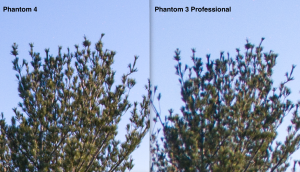 P4 vs P3P detail comparison 1