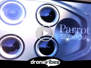 yotube-cover-parrot-sequoia-play